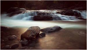Paradise Creek III
