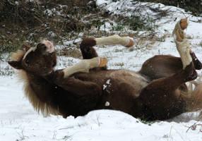 I love snow ! by linka064
