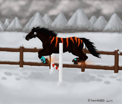 Stig - Christmas competition free-jumping 2014 by Fay-leigh