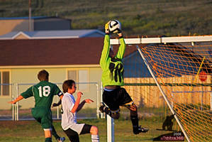 Awesome Soccer Save
