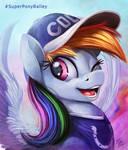 Super Bowl Pony _ Dash