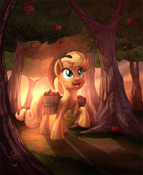 AJ in the woods _ Collab