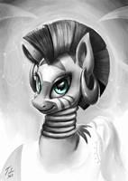 Gray Zecora by Tsitra360