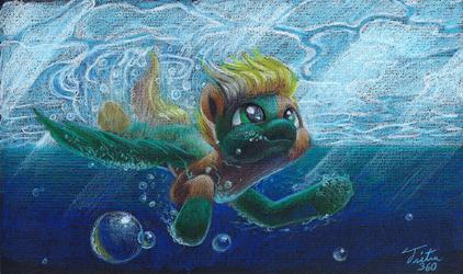 Dive - Commission
