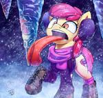 Apple Bloom in Snow
