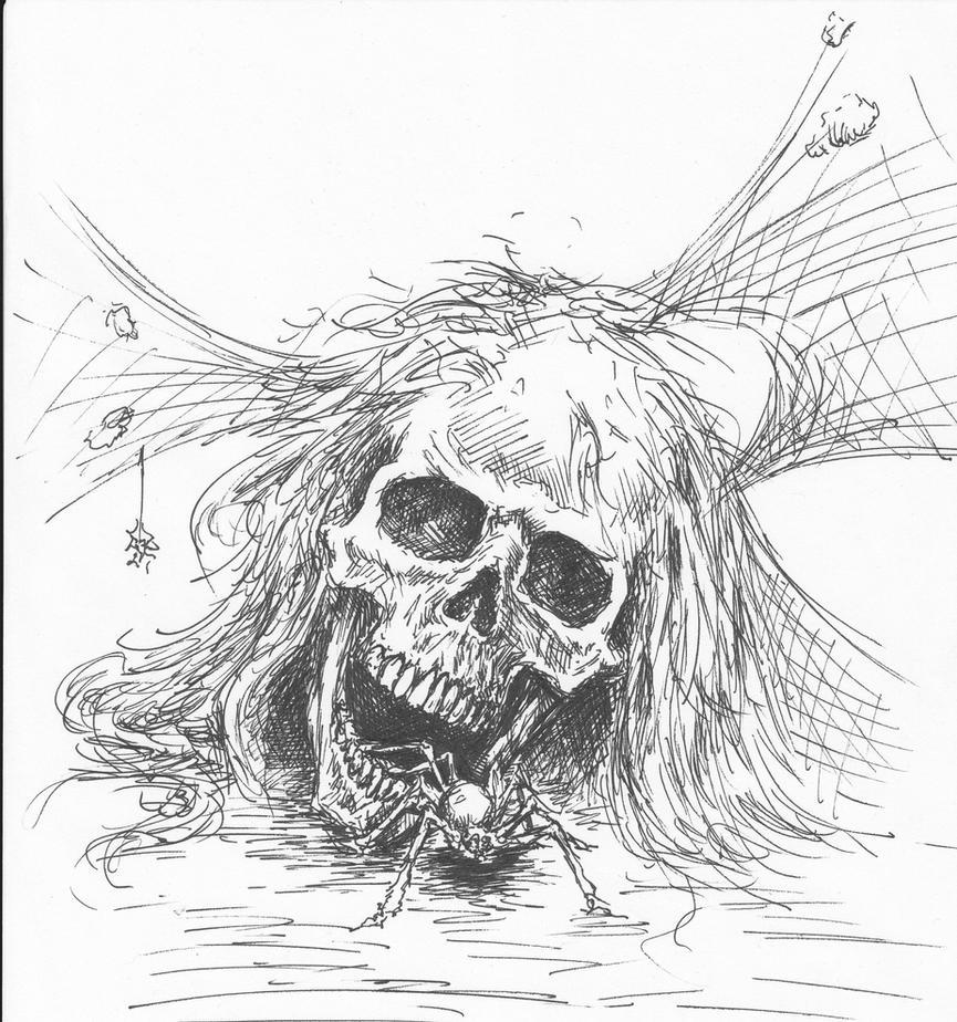 Skull Spider by Dan-Moran