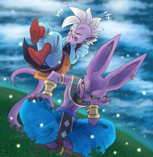 Shin and Beerus