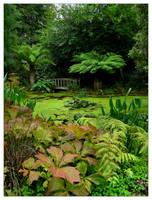 The Hidden Pond by Bogbrush
