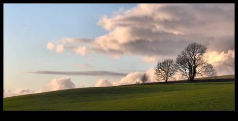 Winter Skies by Bogbrush