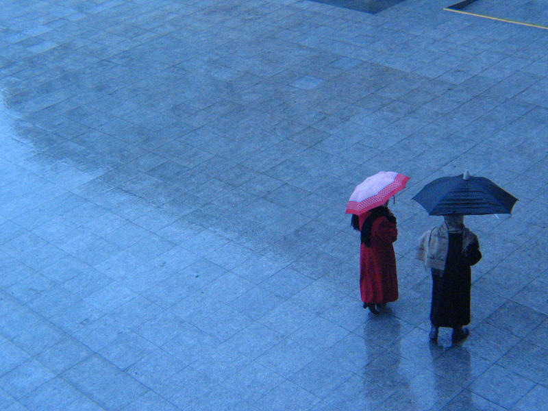 Dia de lluvia by walalapancho