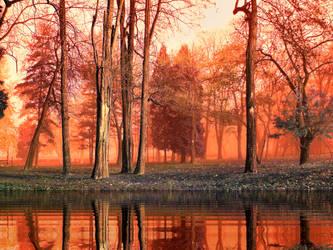 Burning Woods by 1smrad