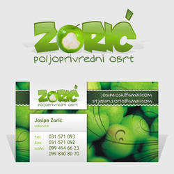 Zoric Logo and b. card