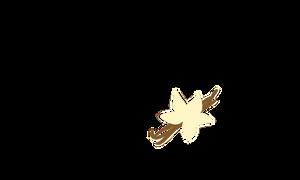 vanilla symbol