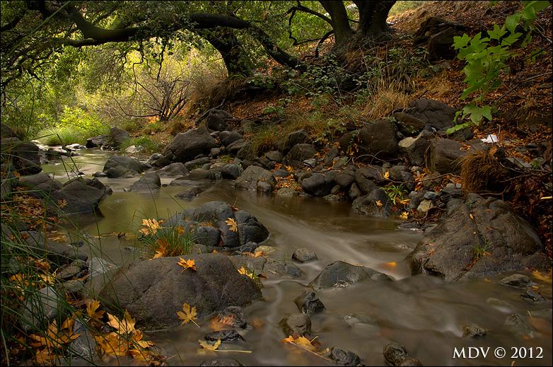 Stenner Creek in October by twelvemotion
