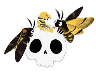 Death's Head Hawk Moth - (Acherontia Atropos) by Rotommowtom