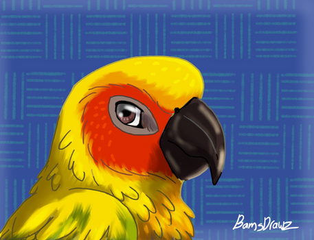 Perky Parrot