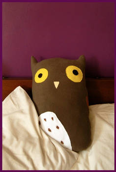 Bed Owl