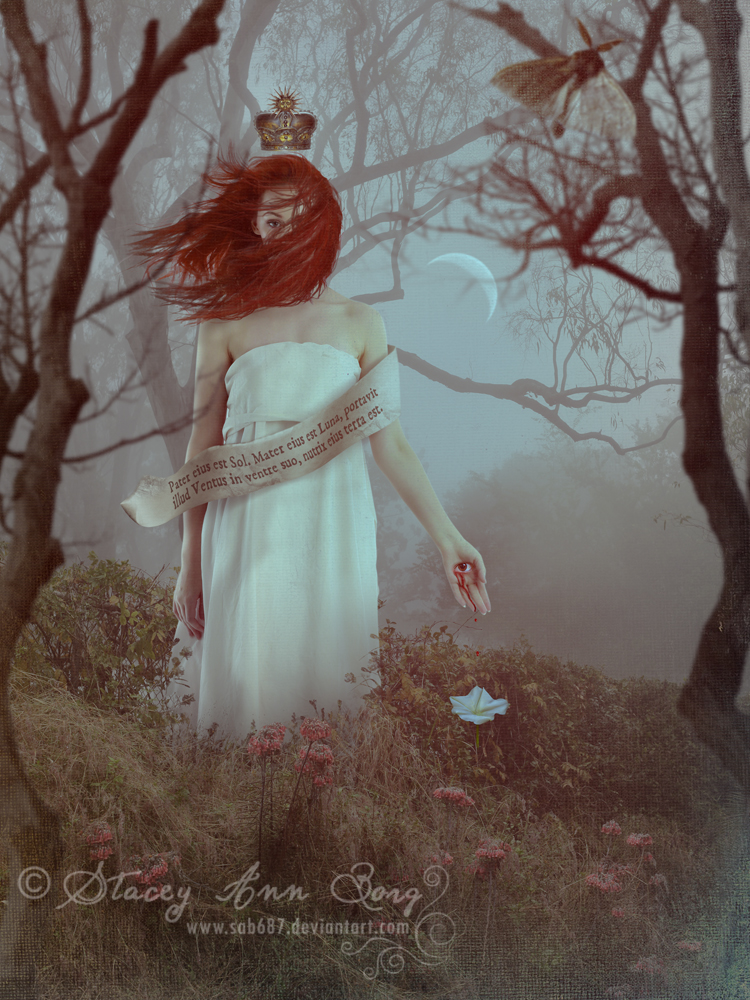 Moonflower by SAB687