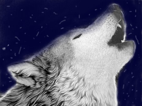 My First Realistic Wolf Drawing Wolf Howling By Xxhunterwolfxx On Deviantart