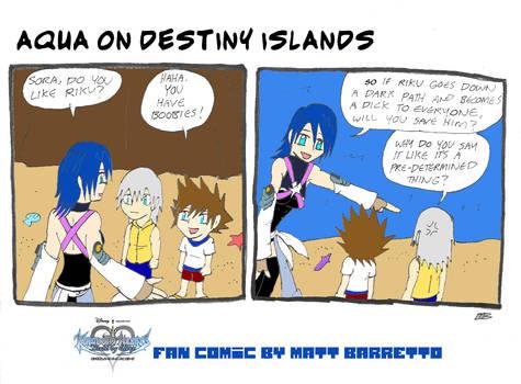 Aqua meets sora and riku