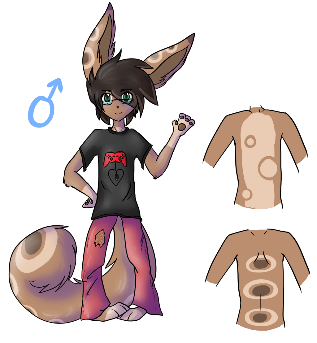 .:Com:. Anthro character design by AwkwardLoser