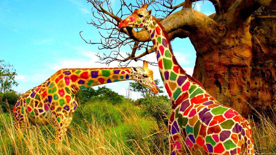 Giraffe colored by OPTILUX on DeviantArt