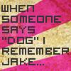 Dog Jake by Antiitah