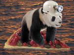 Castaway Panda by Ichigo-Fujiwara