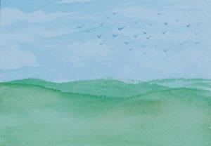 Flock of Birds ATC