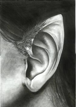 6-weeks study challange EARS week DAY 5-6: Silence