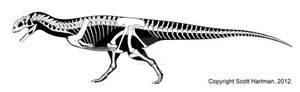 Majungasaurus - redux
