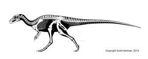 Early Jurassic Ornithiscian