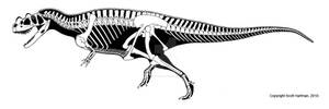 3-horned theropod