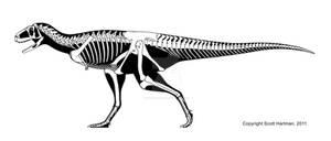 A 'vanilla' abelisaur