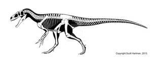 Marsh's Reptile