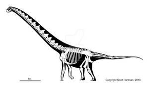 Mischief-causing titanosaur