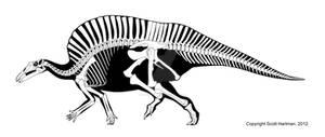 A Sail-Backed Iguanodont