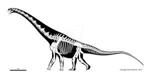 Titanosaur from Malawi