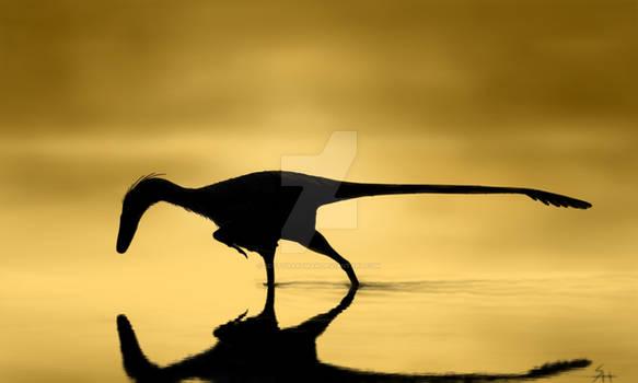 Unenlagia fishing at dawn