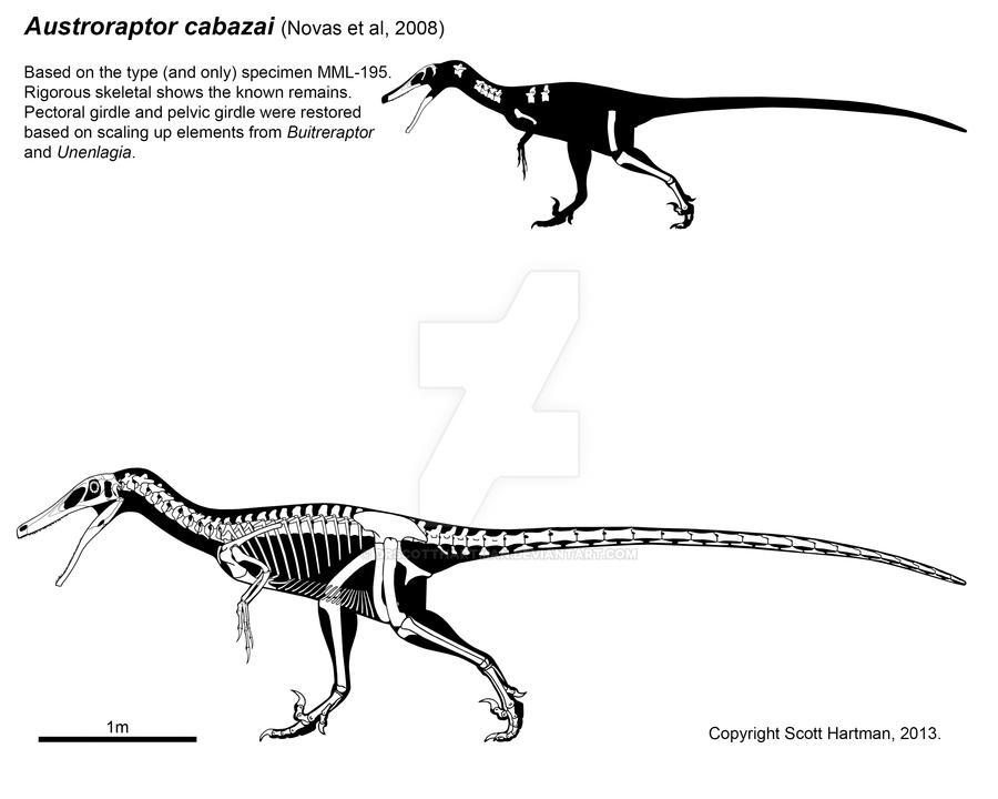 Feathered spinosaur-mimic