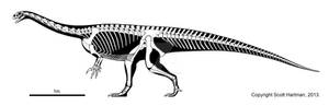 Prosauropod stretch-job