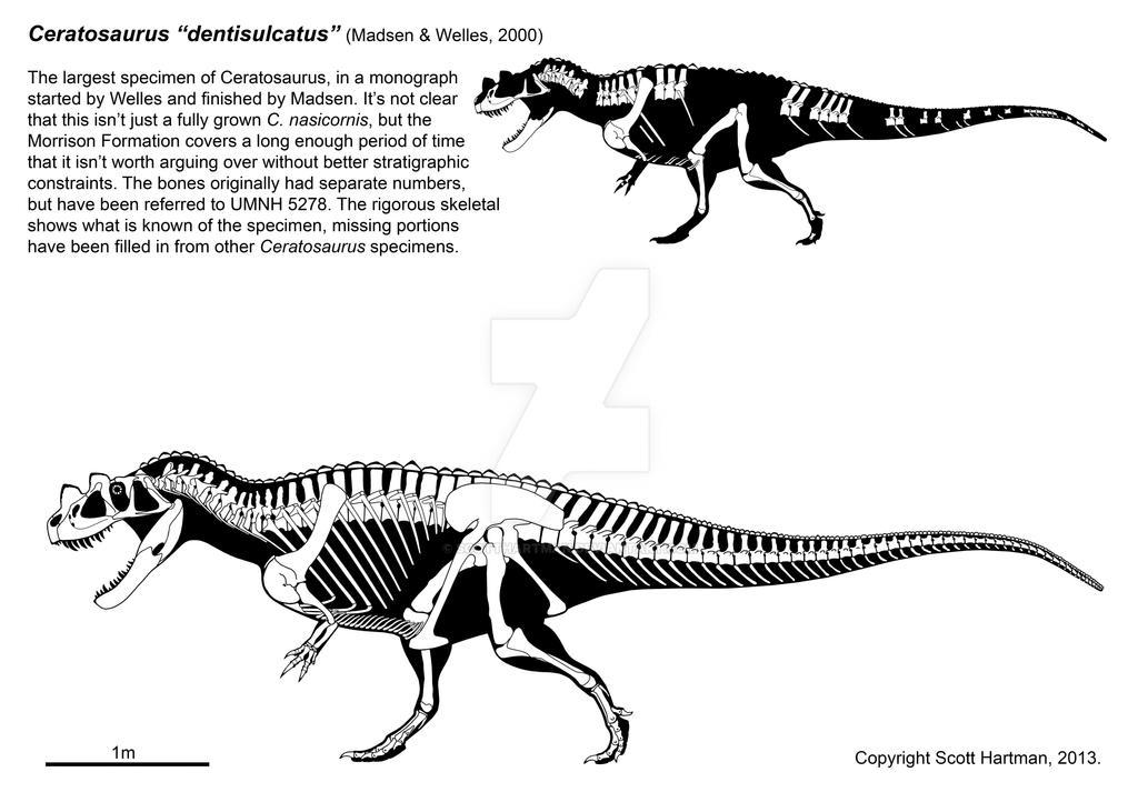 http://img01.deviantart.net/36ba/i/2015/112/2/2/ceratosaurus_wasn_t_a_wuss_by_scotthartman-d5wm7dn.jpg