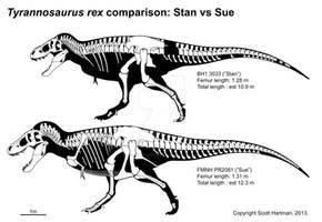 Stan 'n Sue comparison