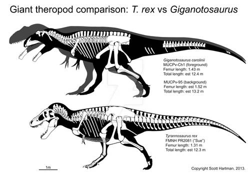 North vs South: Giant theropod square-off
