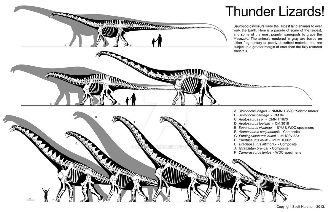 Thunder Lizard size comparison by ScottHartman on DeviantArt