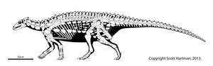 Scelidosaurus - an early armored tank