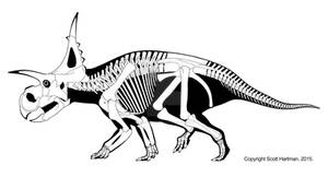 Best guess Xenoceratops