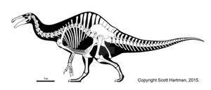 Deinocheirus, an odd duck