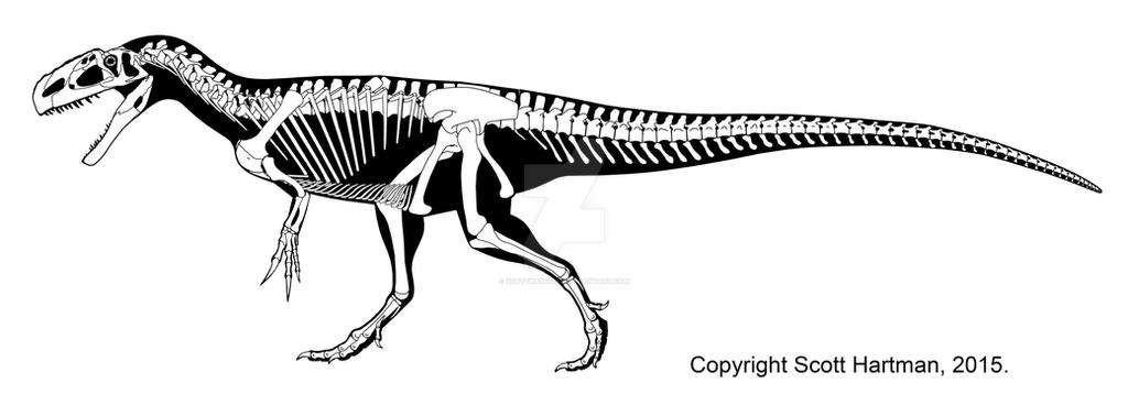 Monolophosaurus by ScottHartman