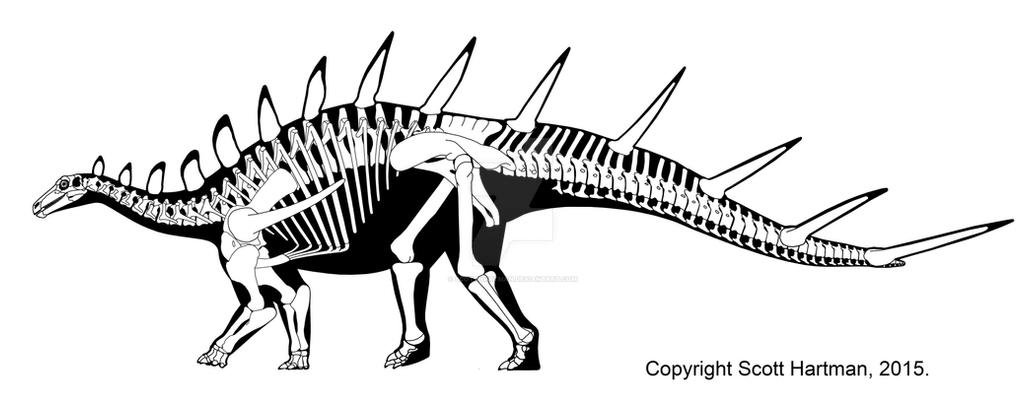 Kentrosaurus by ScottHartman